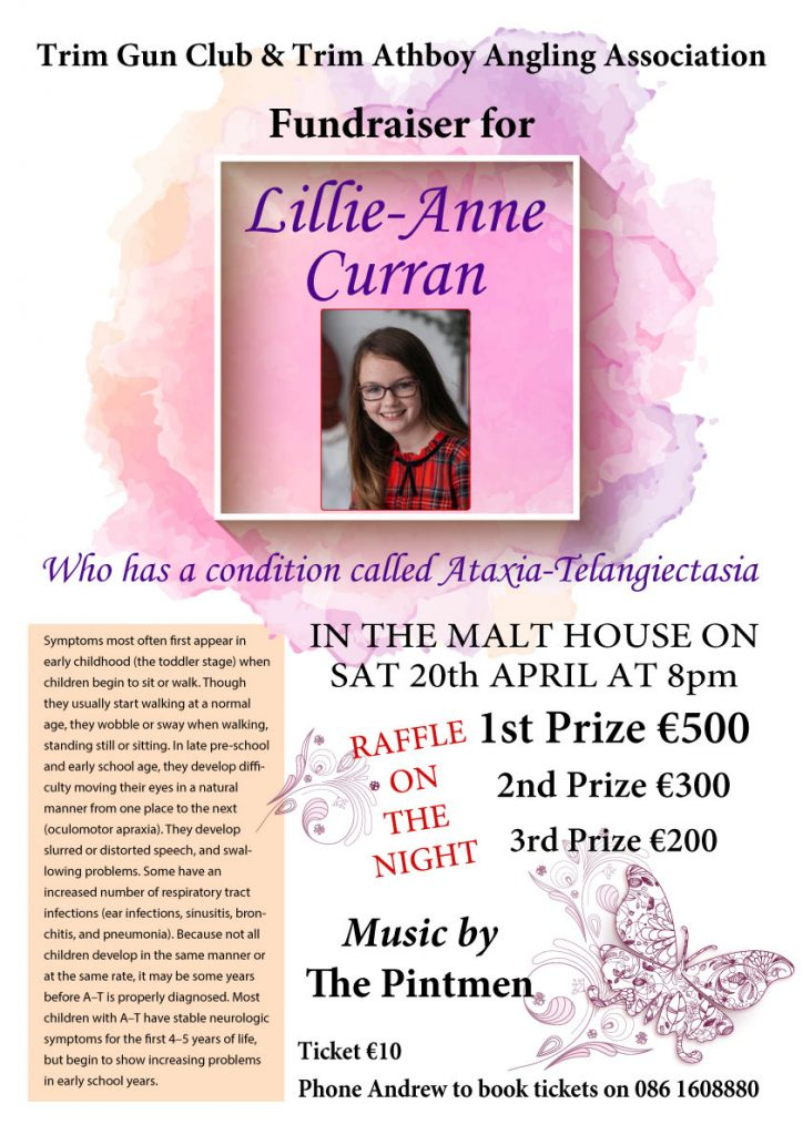 Lillie-Anne Curran fundraiser